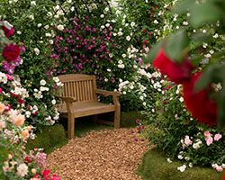 RHS Chelsea Flower Show 2018 Press Day