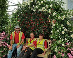 RHS Chelsea Flower Show 2017 Build Up