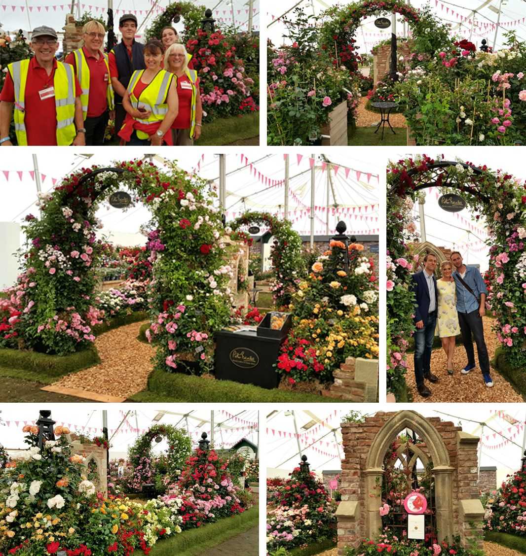 Hampton court flower show voucher codes 2015 - Hampton court flower show ...