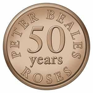50 years of Peter Beales Roses