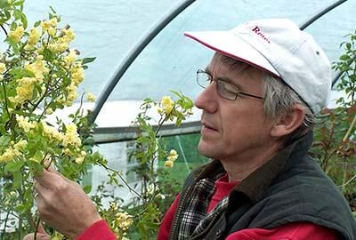 Ian Limmer Peter Beales Roses Nursery Manager