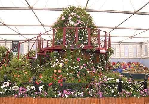 RHS Chelsea Flower Show 2008 Peter Beales Roses