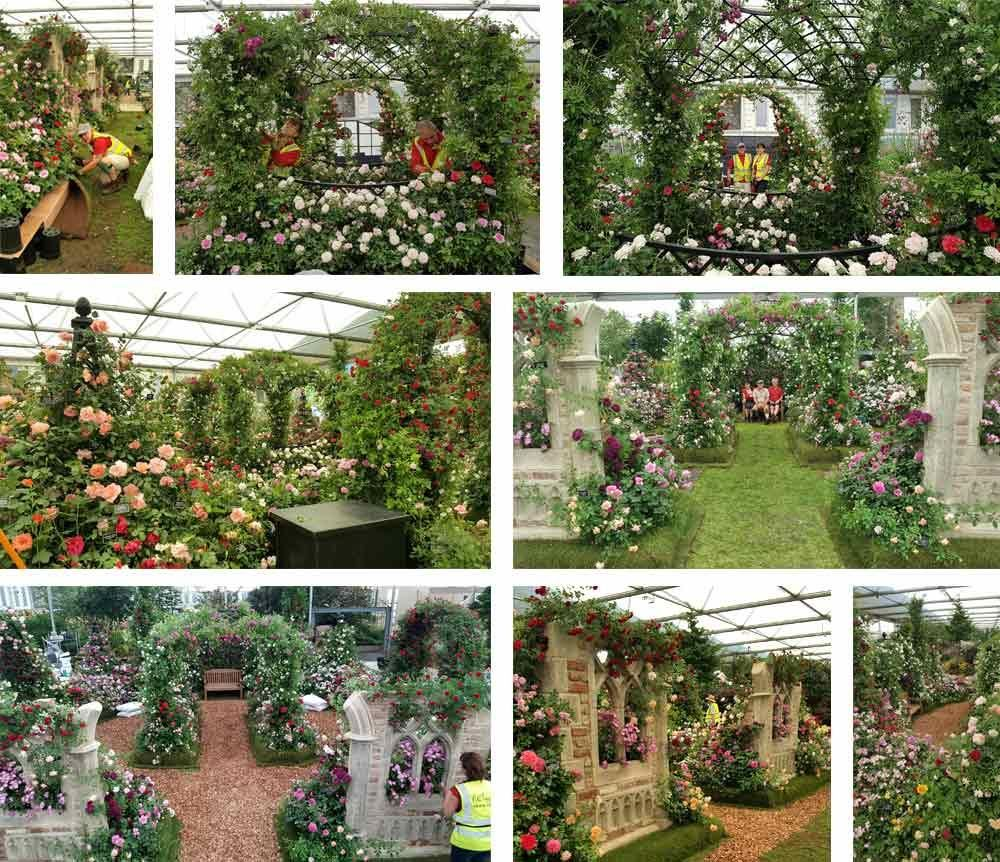 RHS Chelsea Flower Show Build Up 2018