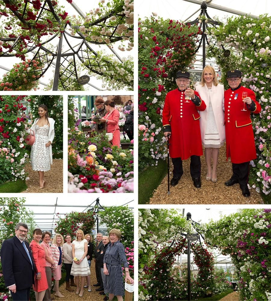 Chelsea Flower Show Press Day 2015