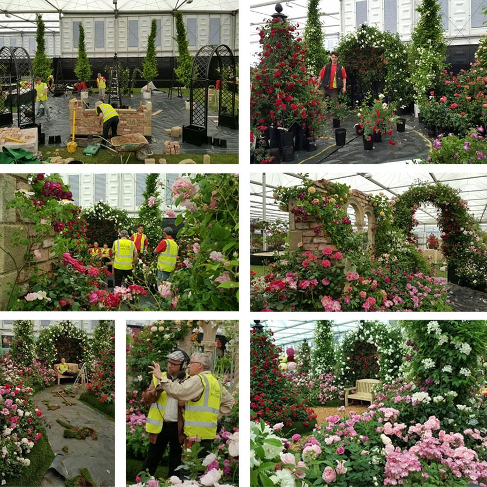 RHS Chelsea Flower Show Build Up 2017