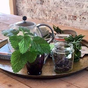 Growing Herbs Workshop