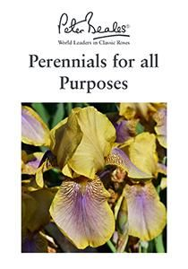 Perennials for all Purposes Guide
