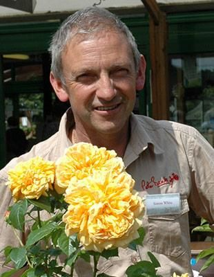 Simon - Peter Beales Garden Centre Manager