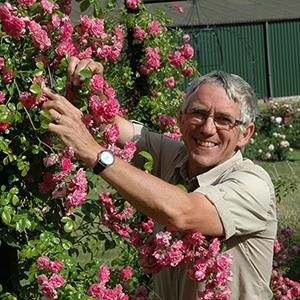 Caring for your roses workshop