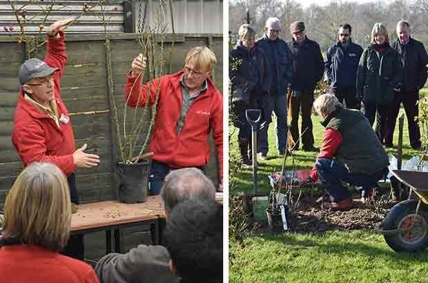 Planting and Pruning Workshop