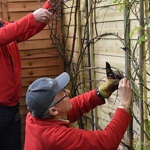 Planting & Pruning Workshop